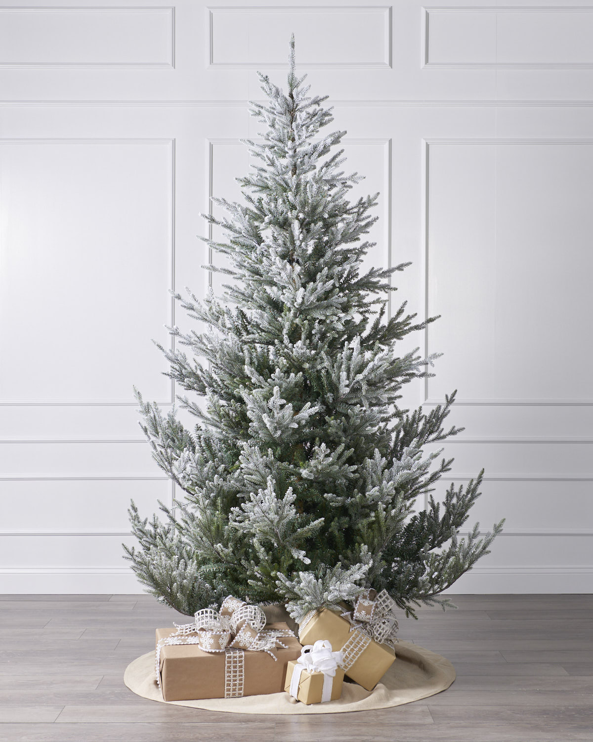 7.5 Ft Snowy Norway Spruce - Christmas Trees, 7ft To 8ft